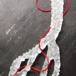 ciseaux détail